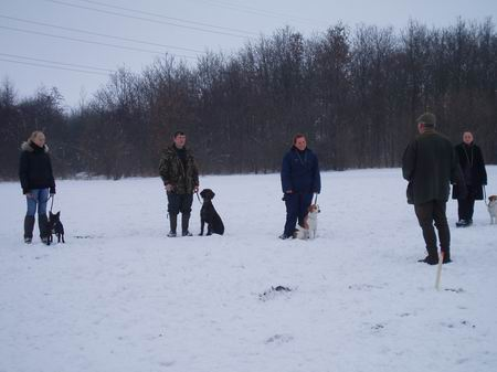hundetraning_hold_12_2006_002.jpg